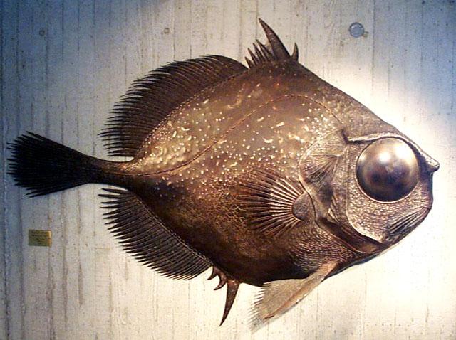 (image: http://seawifs.gsfc.nasa.gov/OCEAN_PLANET/SQUID/black_oreo_sculpture.jpg)
